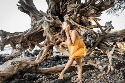 Jeanne Kapela Activist Beauty With Purpose ©2017 Ranae Keane-Bamsey Photography www.EMotionGalleries.com Warm Driftwood Gold Dress Contemporary Dancer