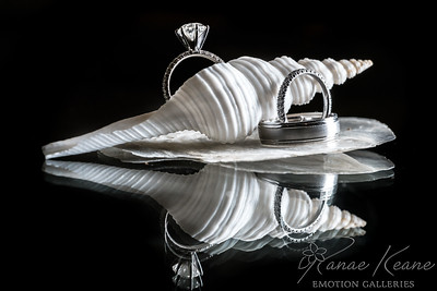 Wedding Ringes and sea shells luxury Hawaiian ©2017 Ranae Keane-Bamsey Photography www.EMotionGalleries.com