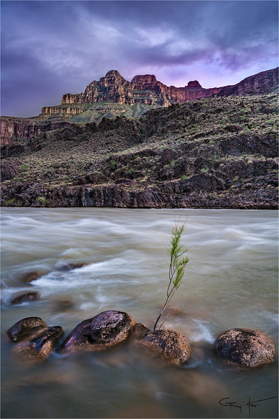 Twilight, Colorado River, Grand Canyon