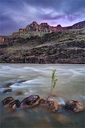 Twilight, Colorado River, Grand Canyon
