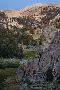 Green valley in the stony landscape of California's White Mountains, August 2013.