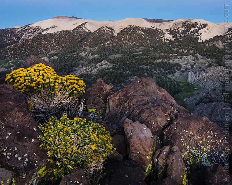 Dawn over Cottonwood Basin, White Mountains, California, August 2013.