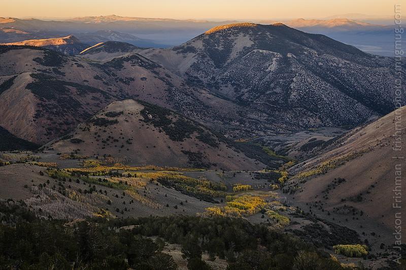 Sunset and autumn aspens, Table Mountain Wilderness, Monitor Range, Nevada, October 2014.