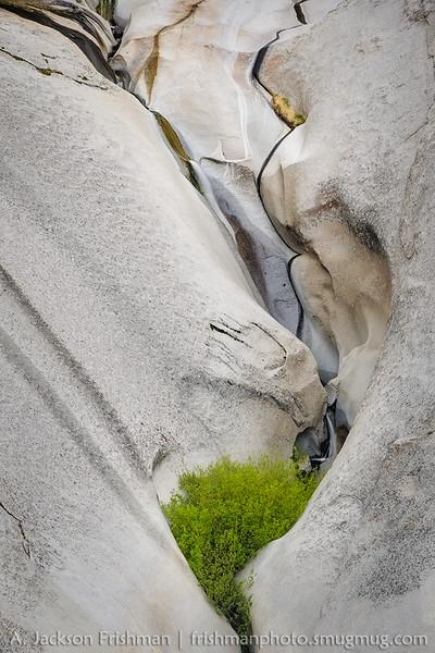 Waterfalls in sculpted granite, Toiyabe Range, Nevada May 2015.