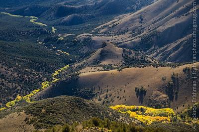 Autumn aspens follow the water, Table Mountain Wilderness, Monitor Range, Nevada, October 2015.
