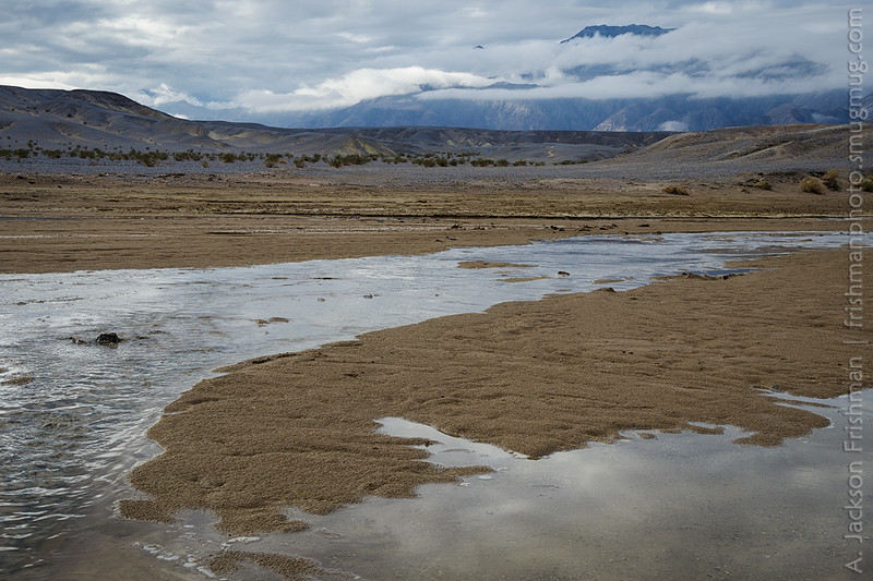 Salt Creek under winter rain clouds, Death Valley, California, January 2016.