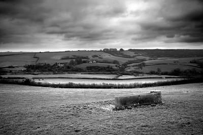 Dorset Afternoon