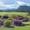 Golf_Photography_18