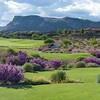 Golf_Photography_03
