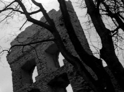 Schriesheim Castle Detail