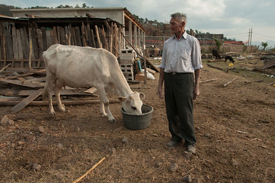 Clodoveo Rodríguez feeds his cow, Mariposa, while workers construct a processing plant a few meters from his house in San Rafael las Flores, Santa Rosa. Having refused to sell his land to the mining company, his plot was left surrounded by the mining operation.  2012