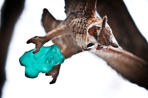 Owl & Gummy II