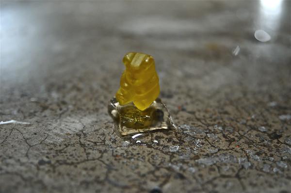 Gummy Tundra