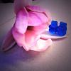 Gummy Paradise