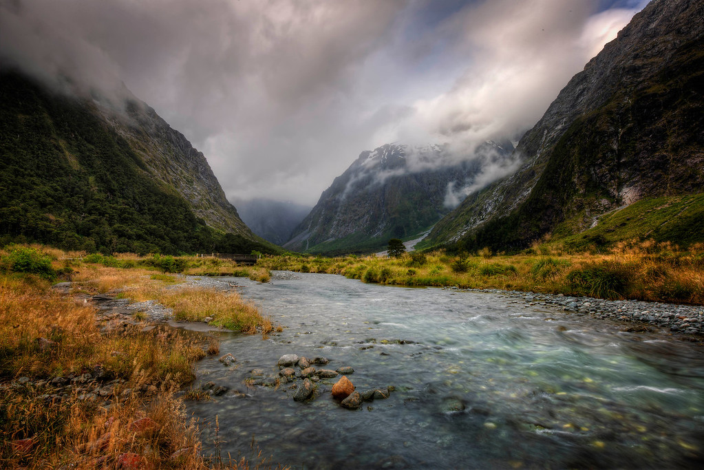 Monkey Creek , Fiordland National park New Zealand.