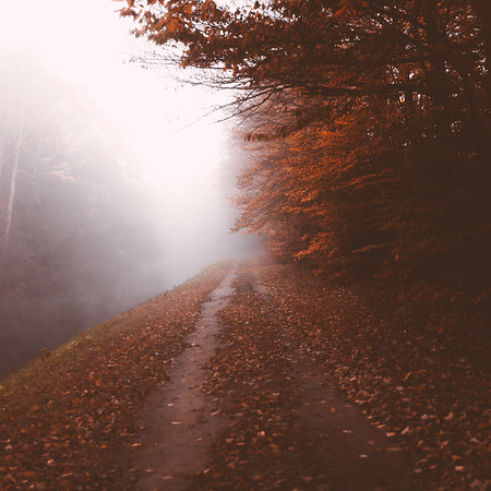 Fall Dirt Road