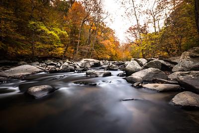 Fall at Rock Creek Park
