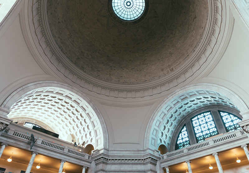 National Museum of Natural History Ceiling