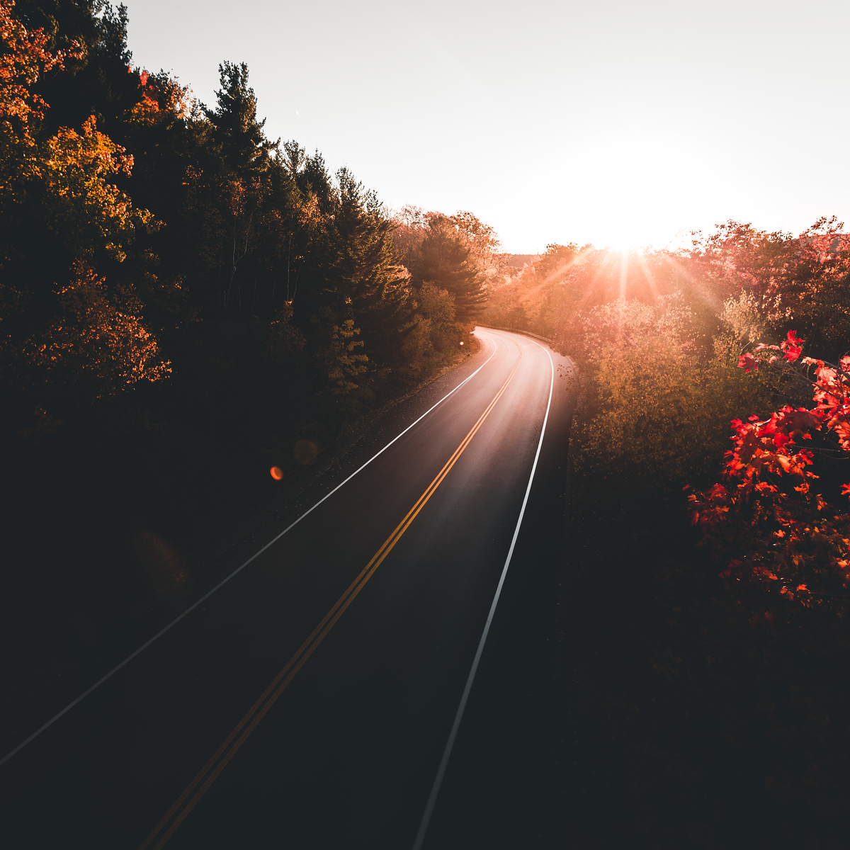 Acadia Sunset Road
