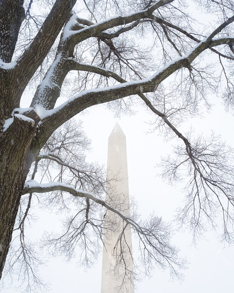 Snowing Washington Monument