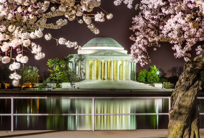 Trying to get a good cherry blossom festival photo at night was tough but I'm pleased with the shot I got.  http://ihitthebutton.com/jefferson-memorial-at-night/