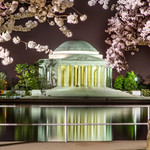 """Trying to get a good cherry blossom festival photo at night was tough but I'm pleased with the shot I got.<br /> <br />  <a href=""""http://ihitthebutton.com/jefferson-memorial-at-night/"""">http://ihitthebutton.com/jefferson-memorial-at-night/</a>"""
