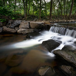 Creek in College Park