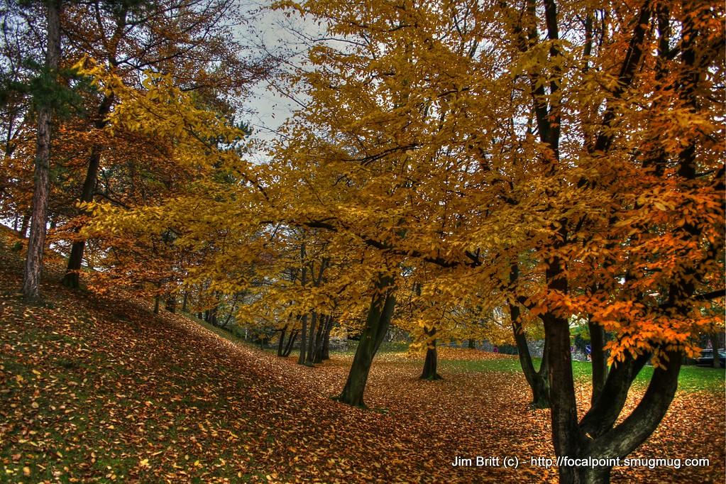 Fall - Prague CZ