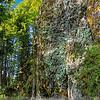 Walking path to Multnomah Falls, Oregon. HDR