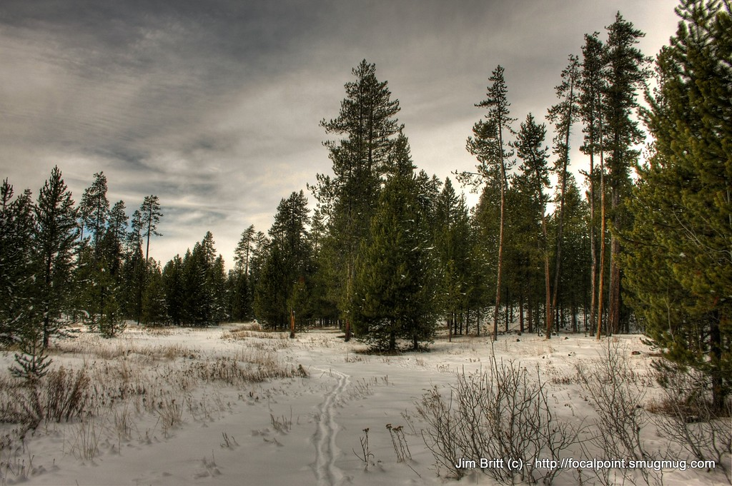 Winter Wonderland in Idaho.  Harriman Park, near Ashton, ID