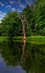 Reflection - Muskoka, Canada