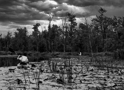 Kayaking - near Collingwood, Ontario, Canada
