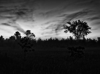 Pre-Dawn Silhouette - Prince Edward County, Ontario CANADA