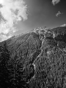 A Sled Run - Switzerland