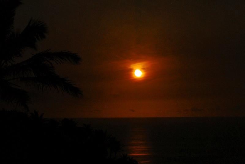 Orange Moon_2500