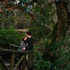 Hannah & Andrew -0122