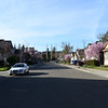 DSC_8574-streetview