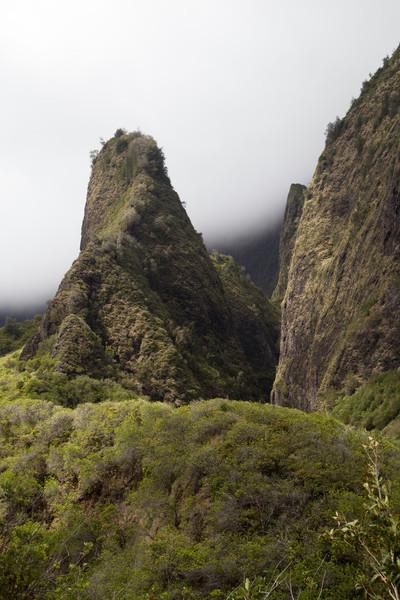 Iao Valley needle.