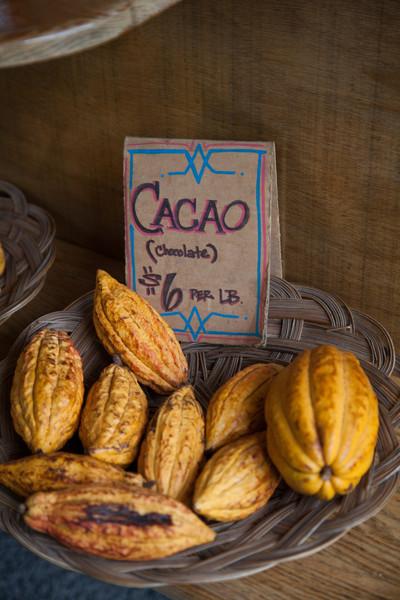 Cacao .....grown near Hana, Maui