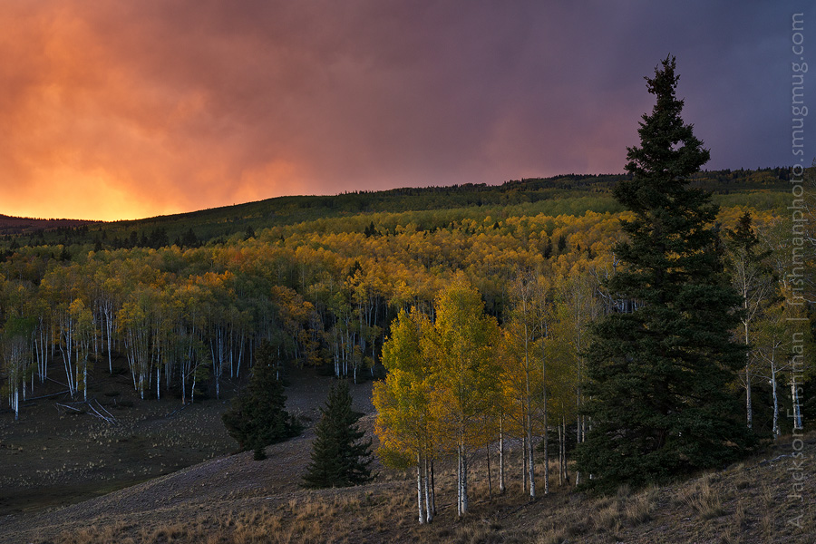 Stormy autumn sunset in New Mexico's Cruces Basin Wilderness, September 2012.