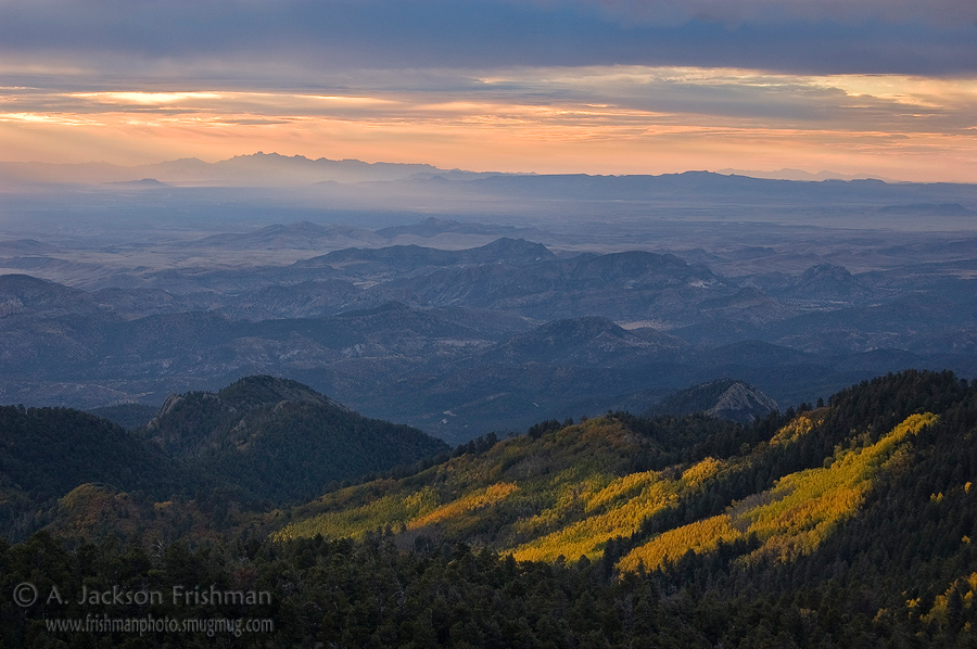 Autumn sunrise over aspens in New Mexico's Black Range (Organ Mountains in the distance), October 2010.
