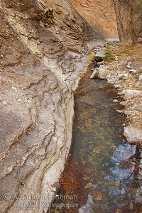 Pool in Indian Creek Canyon, Apache Kid Wilderness, New Mexico, March 2010.