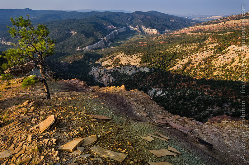 Sunrise on the Rio Gallina canyon, Chama River Canyon Wilderness, New Mexico, August 2012.