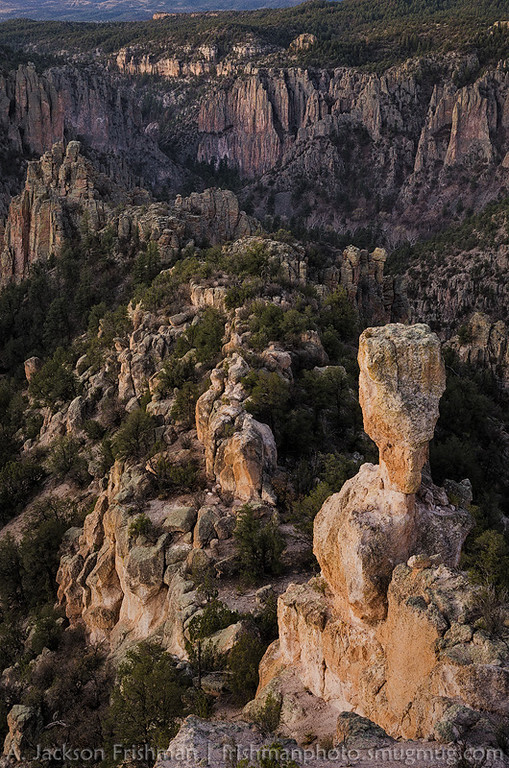 Dawn light in the canyon of the Middle Fork of the Gila River, New Mexico, March 2013.