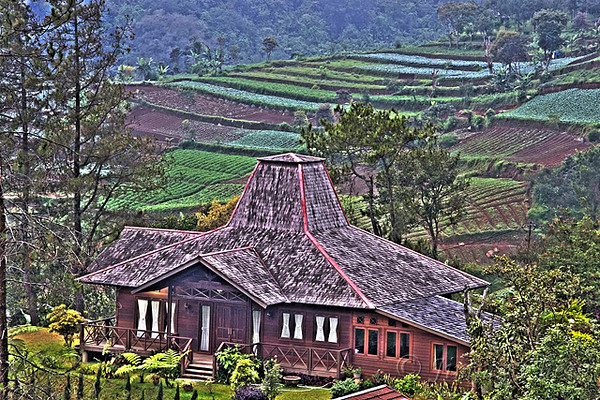 """<font color=""""yellow"""">This house is located at Puncak hill.</font><br>"""