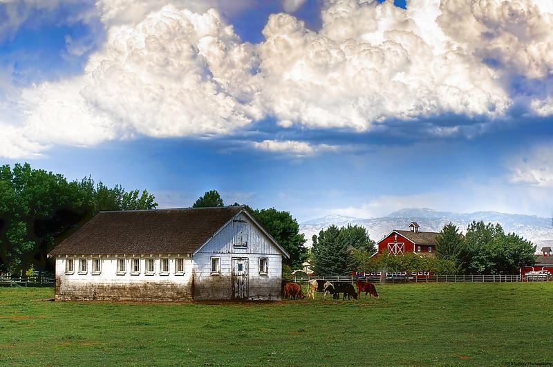 Idaho Farm