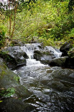 Ka'au Waterfall No. 1 - The Vertex