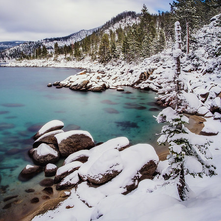 Tahoe Snow Days