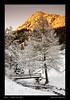 Vallon de Van - Valais - Janvier 2011