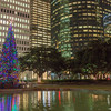 Christmas tree lights in downtown Houston at night.